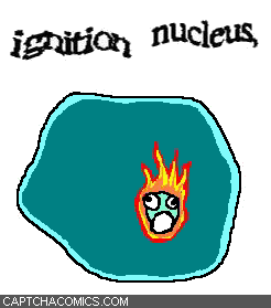 Ignition Nucleus